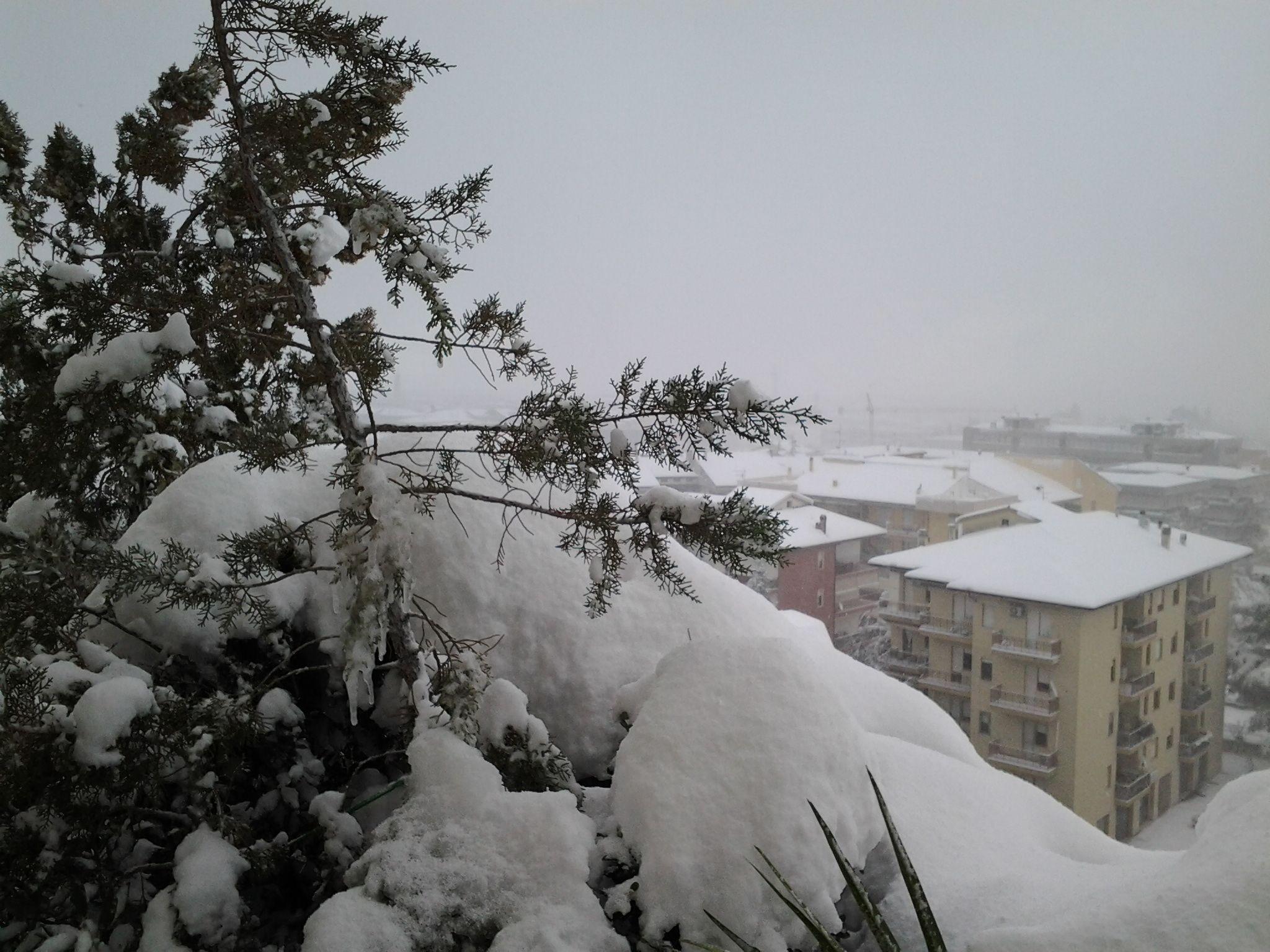 neve di questi giorni (colline adriatiche-Abruzzo)-foto3246.jpg