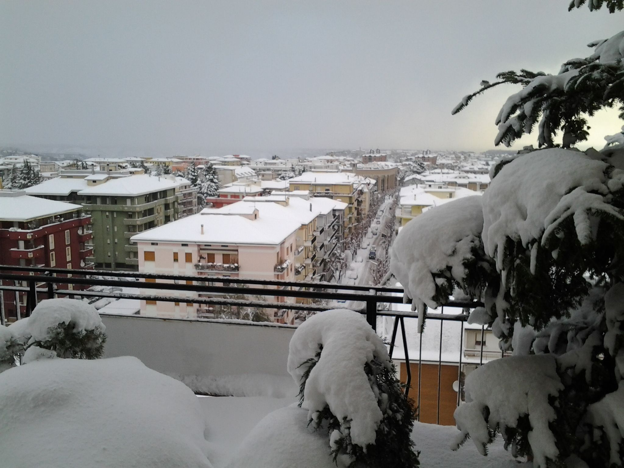 neve di questi giorni (colline adriatiche-Abruzzo)-foto3250.jpg