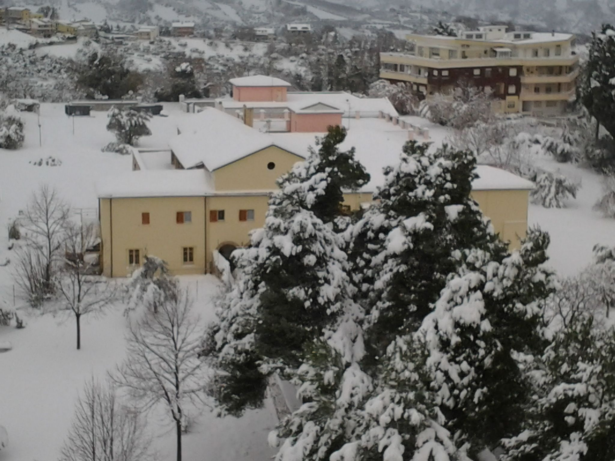 neve di questi giorni (colline adriatiche-Abruzzo)-foto3254.jpg