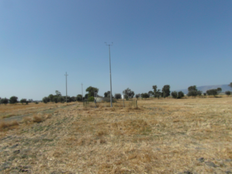 Catenanuova/Sicilia...per approfondire-2011.jpg