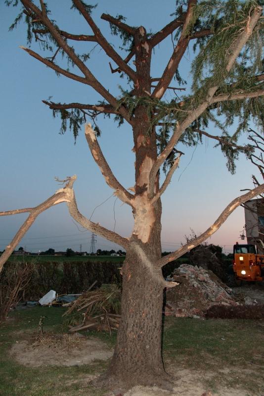 Tornado a Mira e Dolo (VE)-d83a4422a.jpg