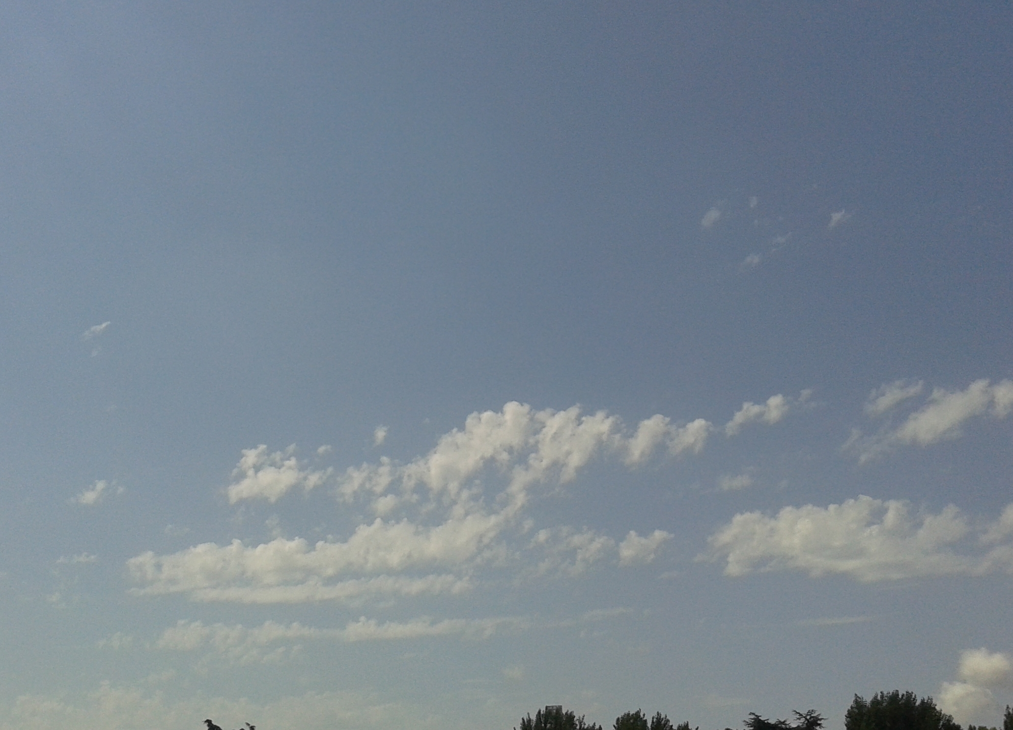 Tutte le Nuvole Qui-altocumulus-castellanus.jpg
