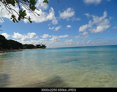 Antille Gennaio 2015-dsc00673.jpg