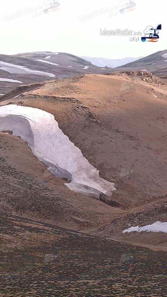 Catena del Libano - Situazione neve attraverso le stagioni-13428625_1141795165881073_9137304623726970375_n.jpg