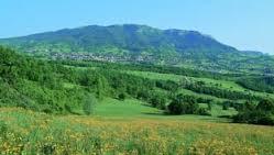 Romagna dal 04 al 10 luglio 2016-images-1.jpeg