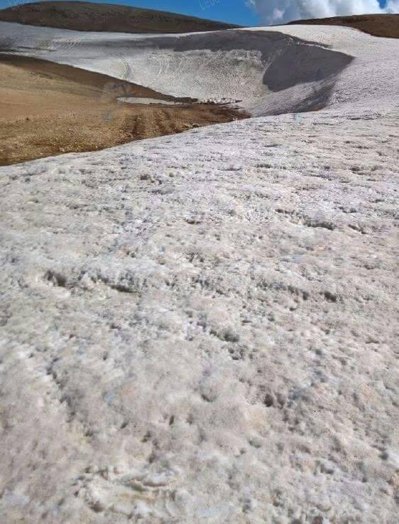 Catena del Libano - Situazione neve attraverso le stagioni-13567020_531095650410918_4234568337275805712_n.jpg