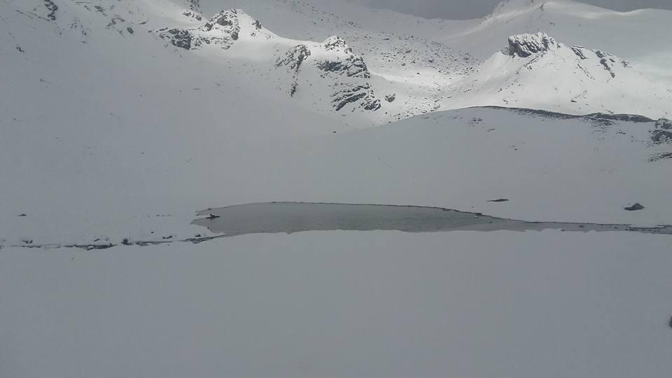 Nowcasting nivo-glaciali Alpi autunno 2016-agnello.jpg