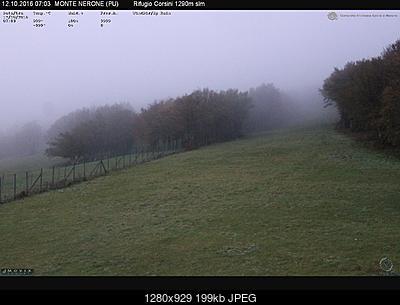 Romagna dal 10 al 16 ottobre 2016-nerone12102016.jpg