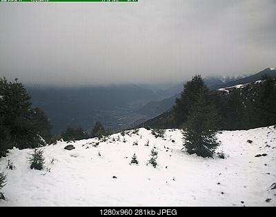 Valtellina, Valchiavenna, Orobie e Alto Lario: Ottobre 2016-prato_01.jpg