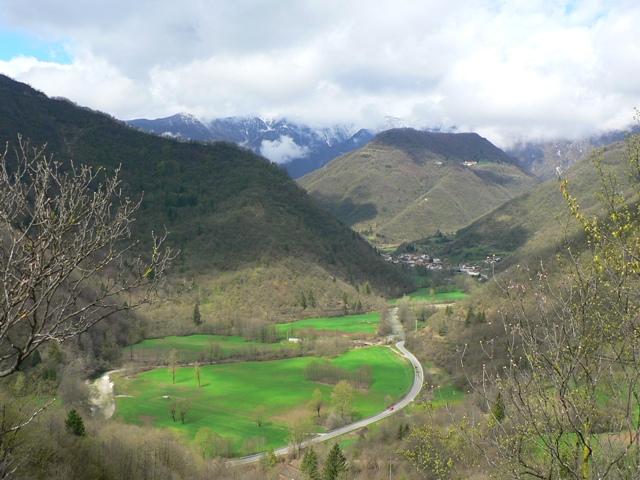 Veneto centro-settentrionale Inverno 2016-17-castana.jpg