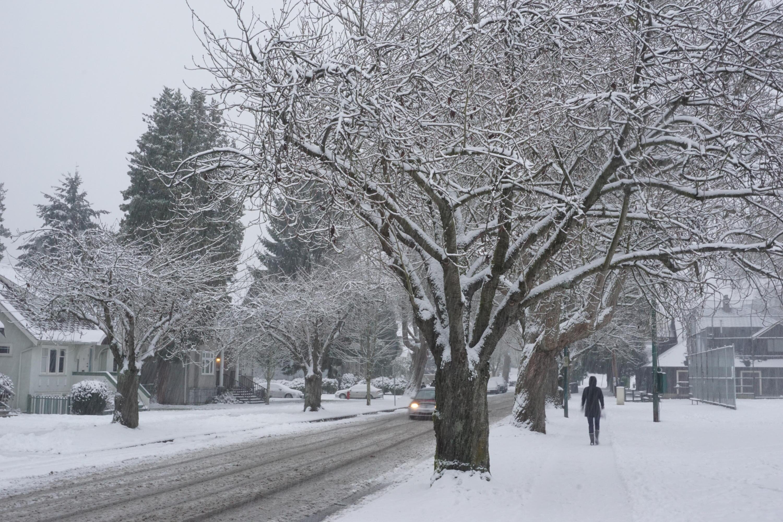 Il tempo a Vancouver (Canada)-dsc00559.jpg