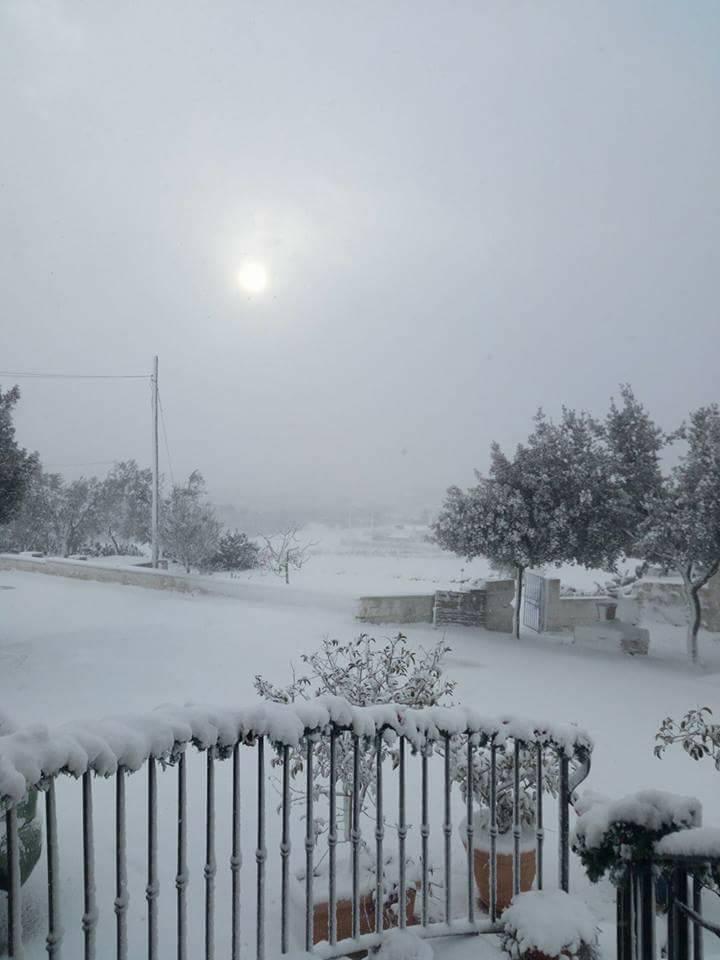 Gelo e neve d'Epifania 2017_qui tutte le FOTO e i VIDEO-15825850_228241824297991_3973234143045796990_n-1-.jpg