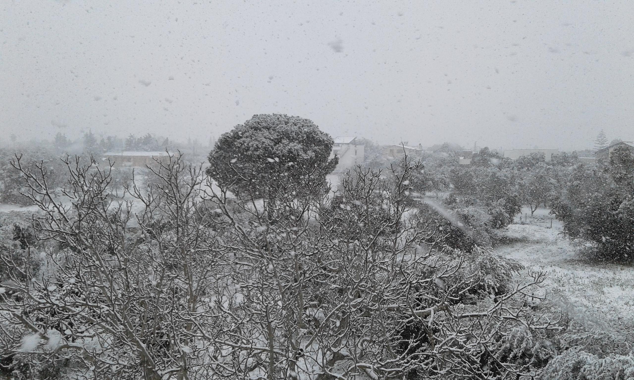 Gelo e neve d'Epifania 2017_qui tutte le FOTO e i VIDEO-20170106_091758.jpg