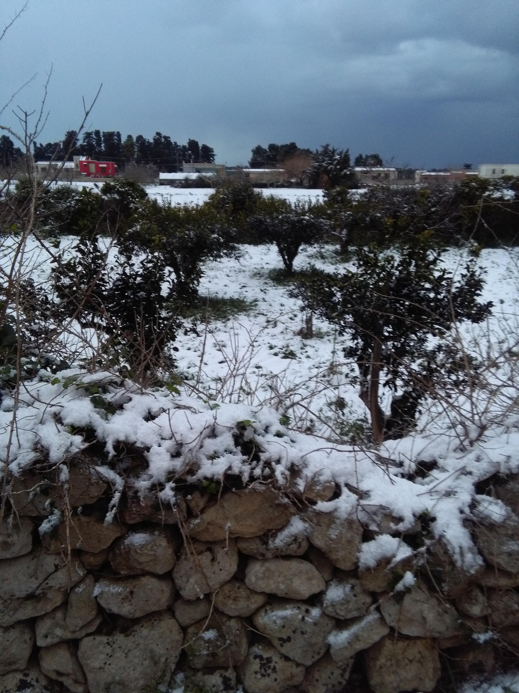 Gelo e neve d'Epifania 2017_qui tutte le FOTO e i VIDEO-img_20170106_163002.jpg