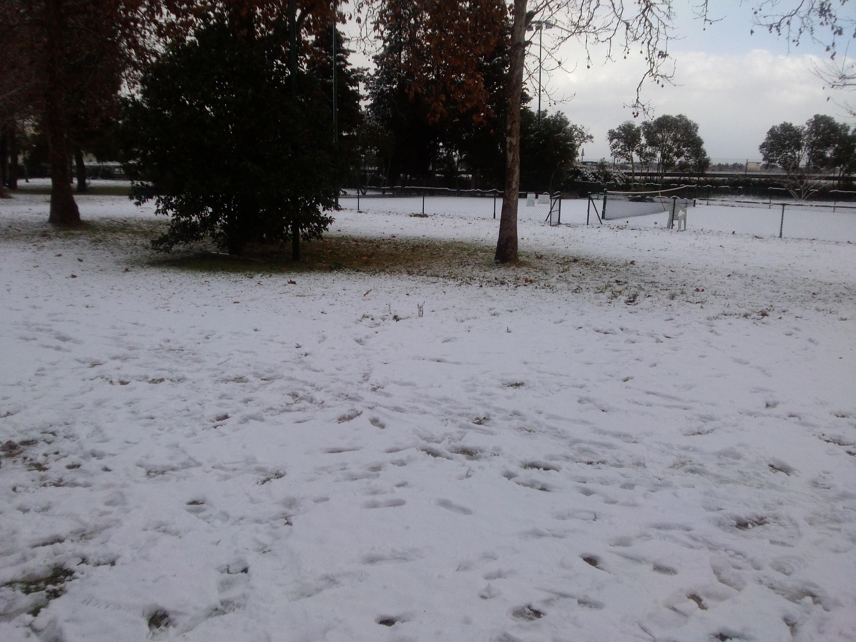 Gelo e neve d'Epifania 2017_qui tutte le FOTO e i VIDEO-cam00752.jpg