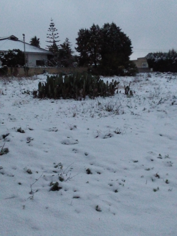Gelo e neve d'Epifania 2017_qui tutte le FOTO e i VIDEO-img_20170106_164027.jpg