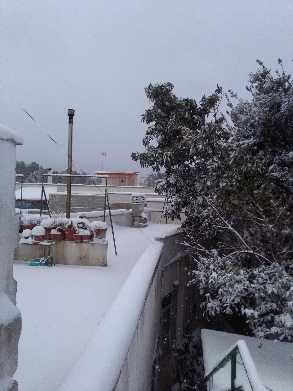 Gelo e neve d'Epifania 2017_qui tutte le FOTO e i VIDEO-img_20170107_150227.jpg