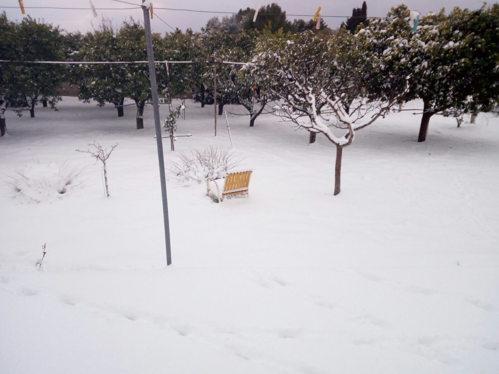 Gelo e neve d'Epifania 2017_qui tutte le FOTO e i VIDEO-img-20170108-wa0007.jpg