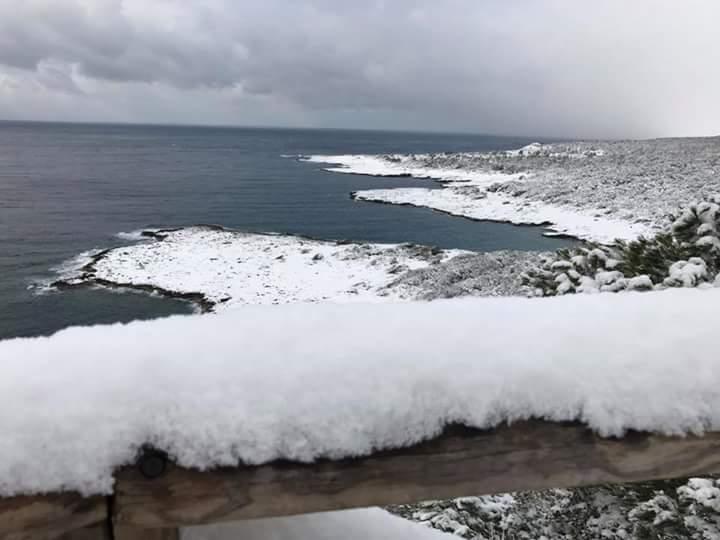 Gelo e neve d'Epifania 2017_qui tutte le FOTO e i VIDEO-fb_img_1483787326729.jpg
