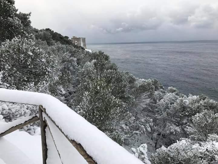 Gelo e neve d'Epifania 2017_qui tutte le FOTO e i VIDEO-fb_img_1483787334500.jpg