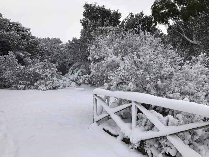 Gelo e neve d'Epifania 2017_qui tutte le FOTO e i VIDEO-fb_img_1483787341057.jpg