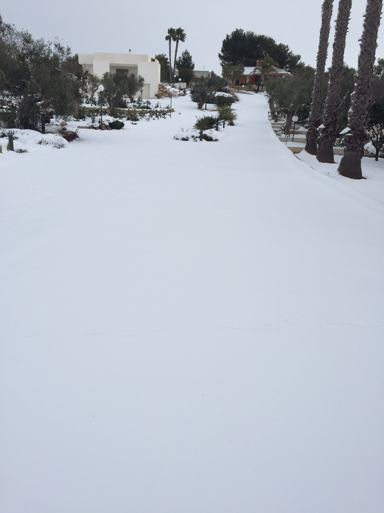 Gelo e neve d'Epifania 2017_qui tutte le FOTO e i VIDEO-foto2.jpg