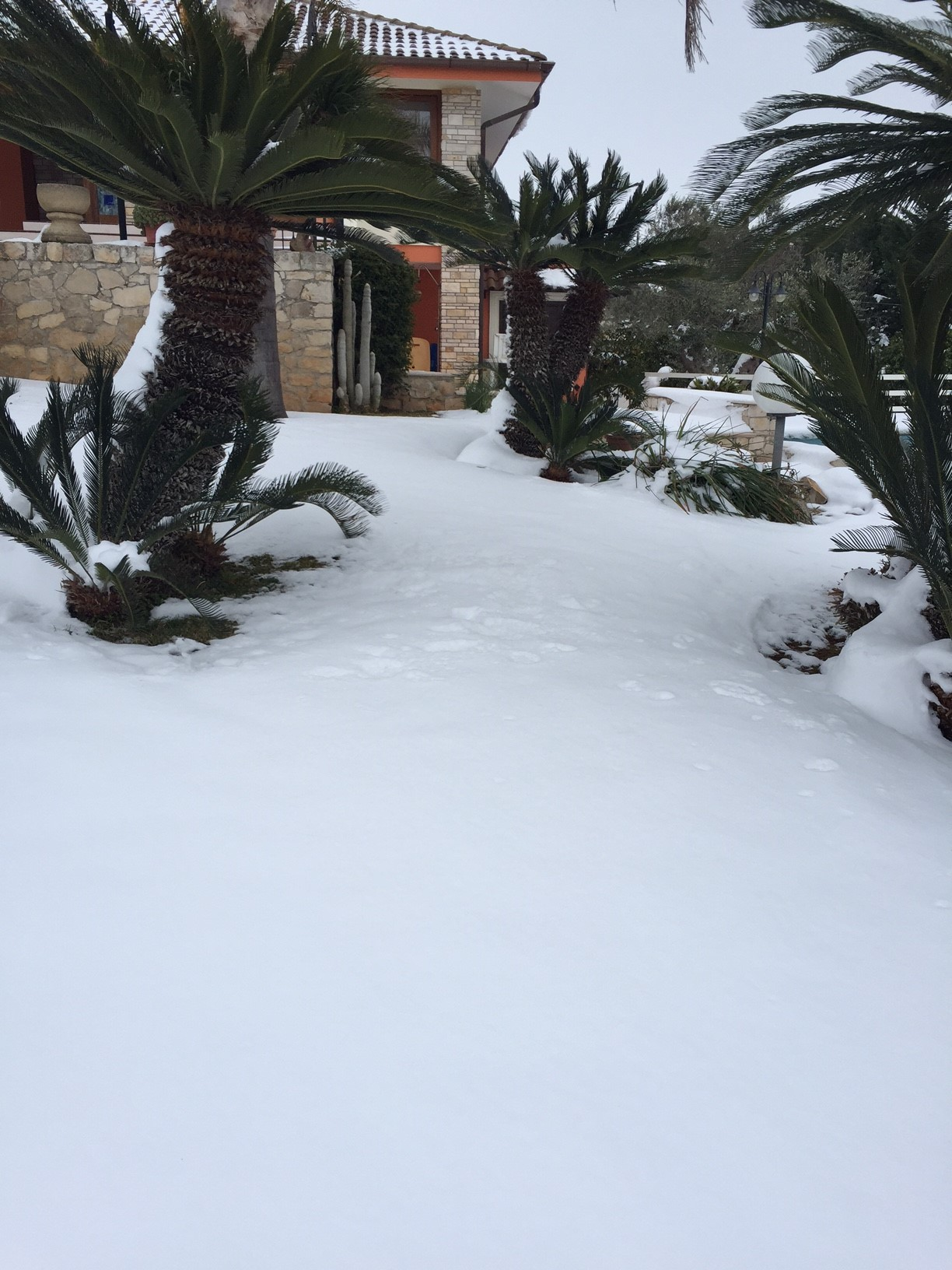 Gelo e neve d'Epifania 2017_qui tutte le FOTO e i VIDEO-foto3.jpg