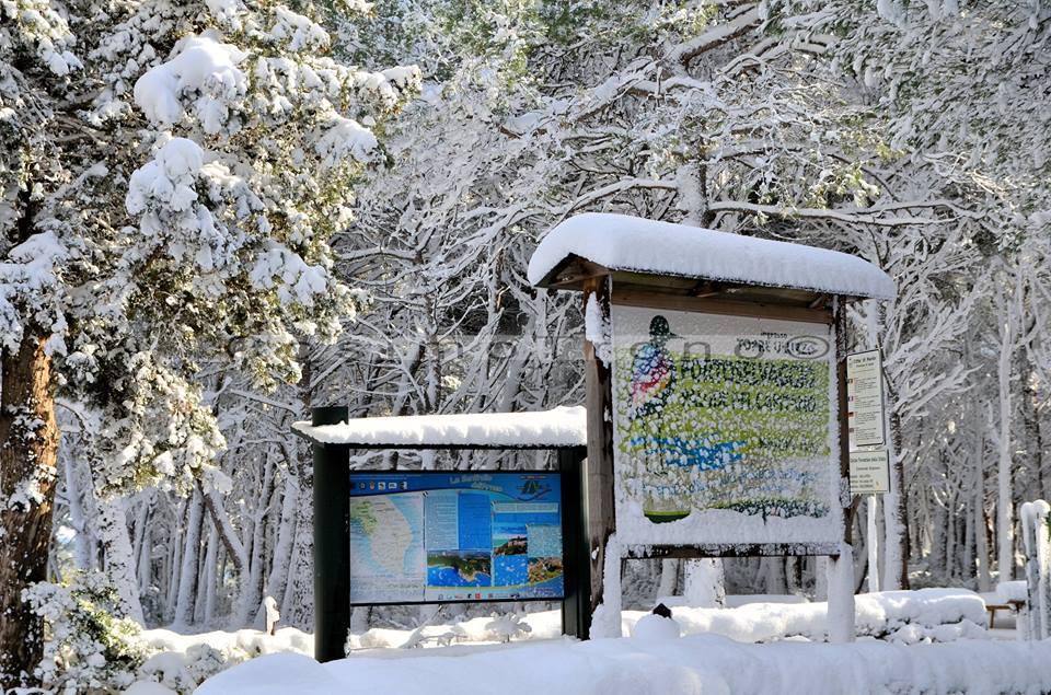 Gelo e neve d'Epifania 2017_qui tutte le FOTO e i VIDEO-15940614_10209728061175939_1962919640424253890_n.jpg