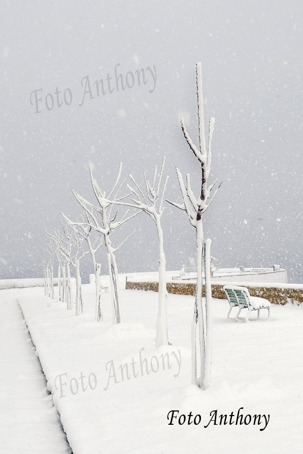 Gelo e neve d'Epifania 2017_qui tutte le FOTO e i VIDEO-15977233_2184923898400218_1533211217841982969_n.jpg
