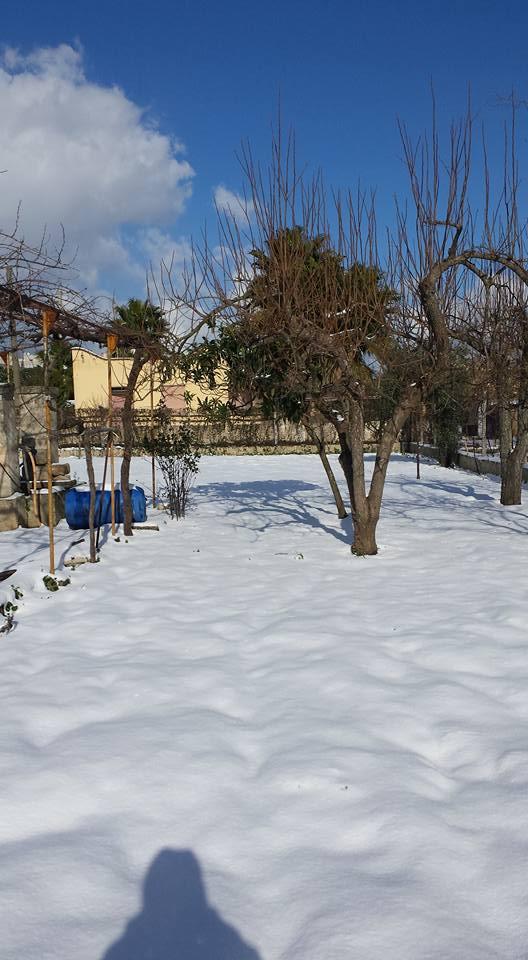Gelo e neve d'Epifania 2017_qui tutte le FOTO e i VIDEO-15826362_10212387629874001_4751190870045455632_n.jpg