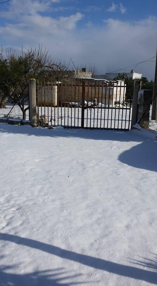 Gelo e neve d'Epifania 2017_qui tutte le FOTO e i VIDEO-15894911_10212387631794049_4608050743472199488_n.jpg