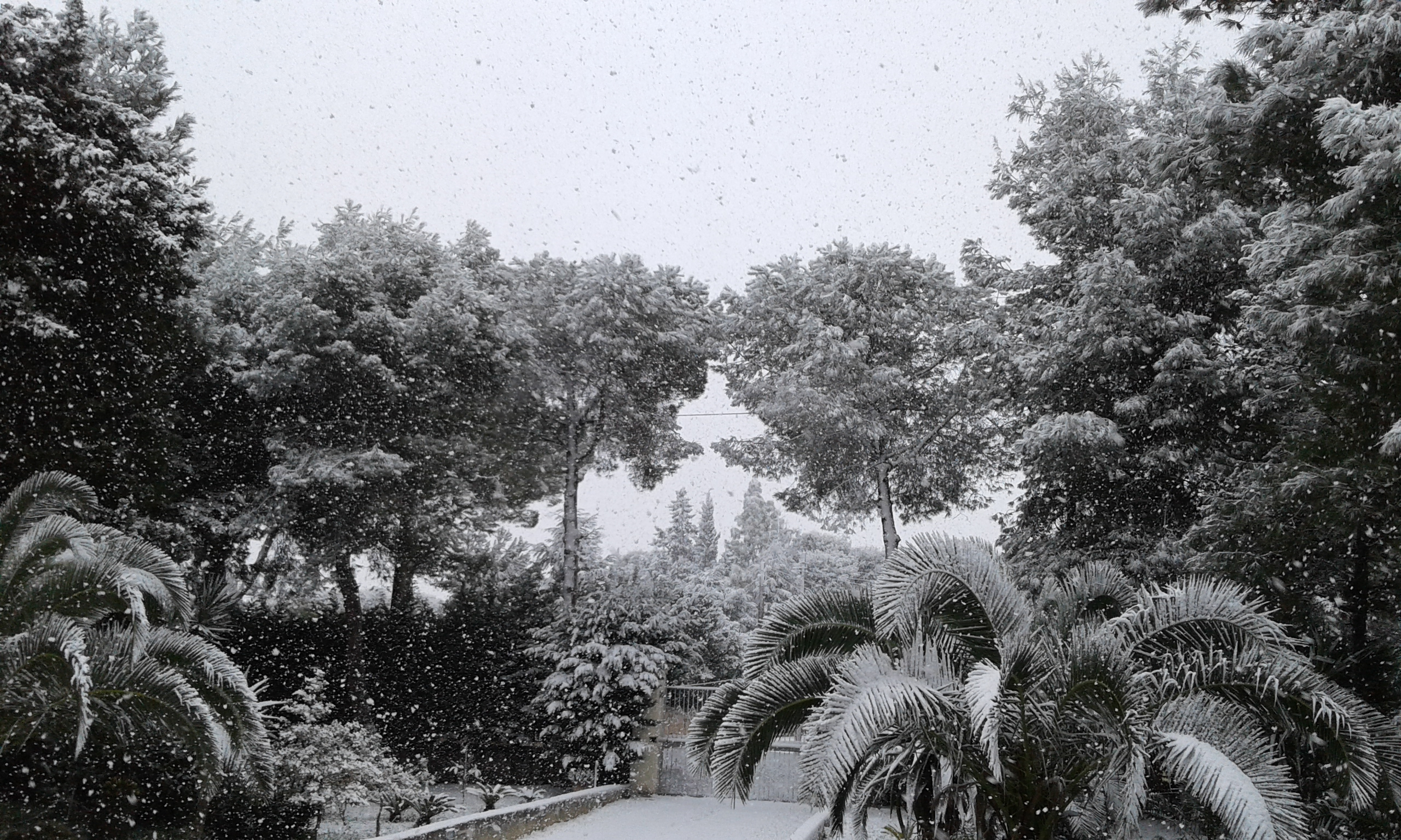 Gelo e neve d'Epifania 2017_qui tutte le FOTO e i VIDEO-20170106_091944.jpg