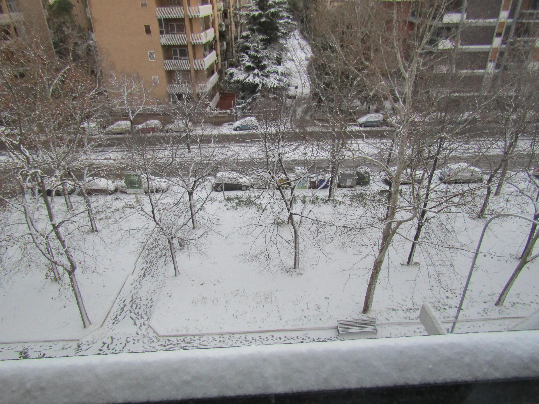 Gelo e neve d'Epifania 2017_qui tutte le FOTO e i VIDEO-img_0363.jpg