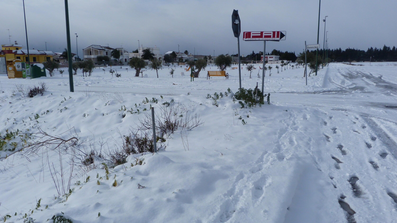 Gelo e neve d'Epifania 2017_qui tutte le FOTO e i VIDEO-p1060295.jpg