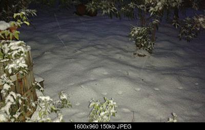 Gelo e neve d'Epifania 2017_qui tutte le FOTO e i VIDEO-whatsapp-image-2017-01-10-at-17.12.12.jpeg