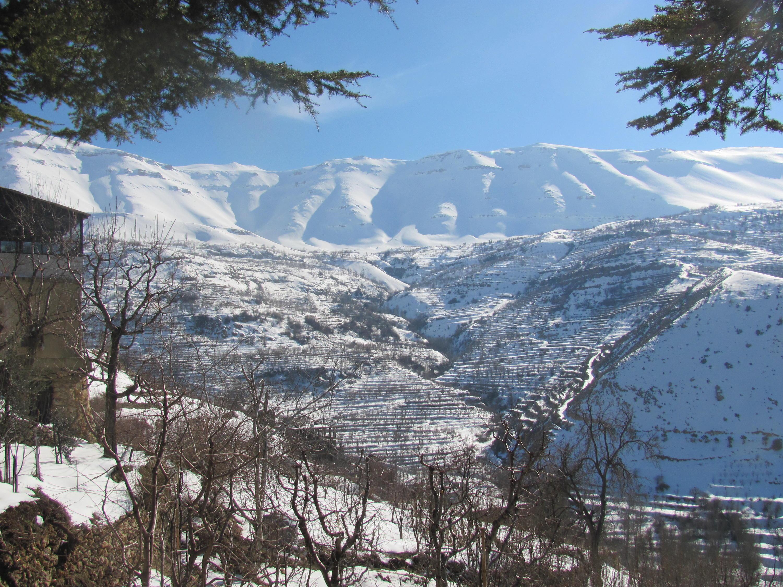 Catena del Libano - Situazione neve attraverso le stagioni-gita-neve-cedri-bqaa-kafra-feb-2017-cam-100.jpg