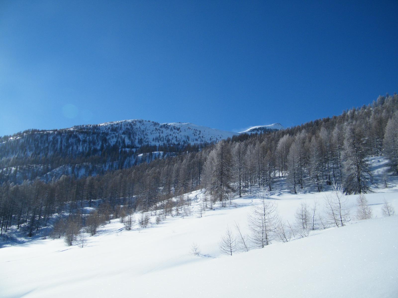 Basso Piemonte 1-10 marzo 2017-dscf1283.jpg