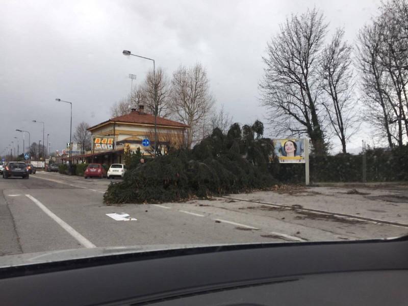 Basso Piemonte 1-10 marzo 2017-t_204e2f384e.jpg