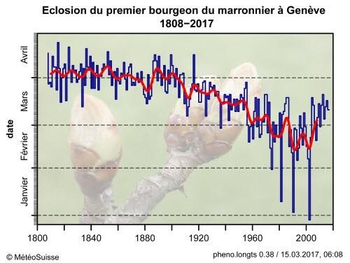 Nowcasting vegetale anno 2017-1bourgeonmarronniergeneve.jpg