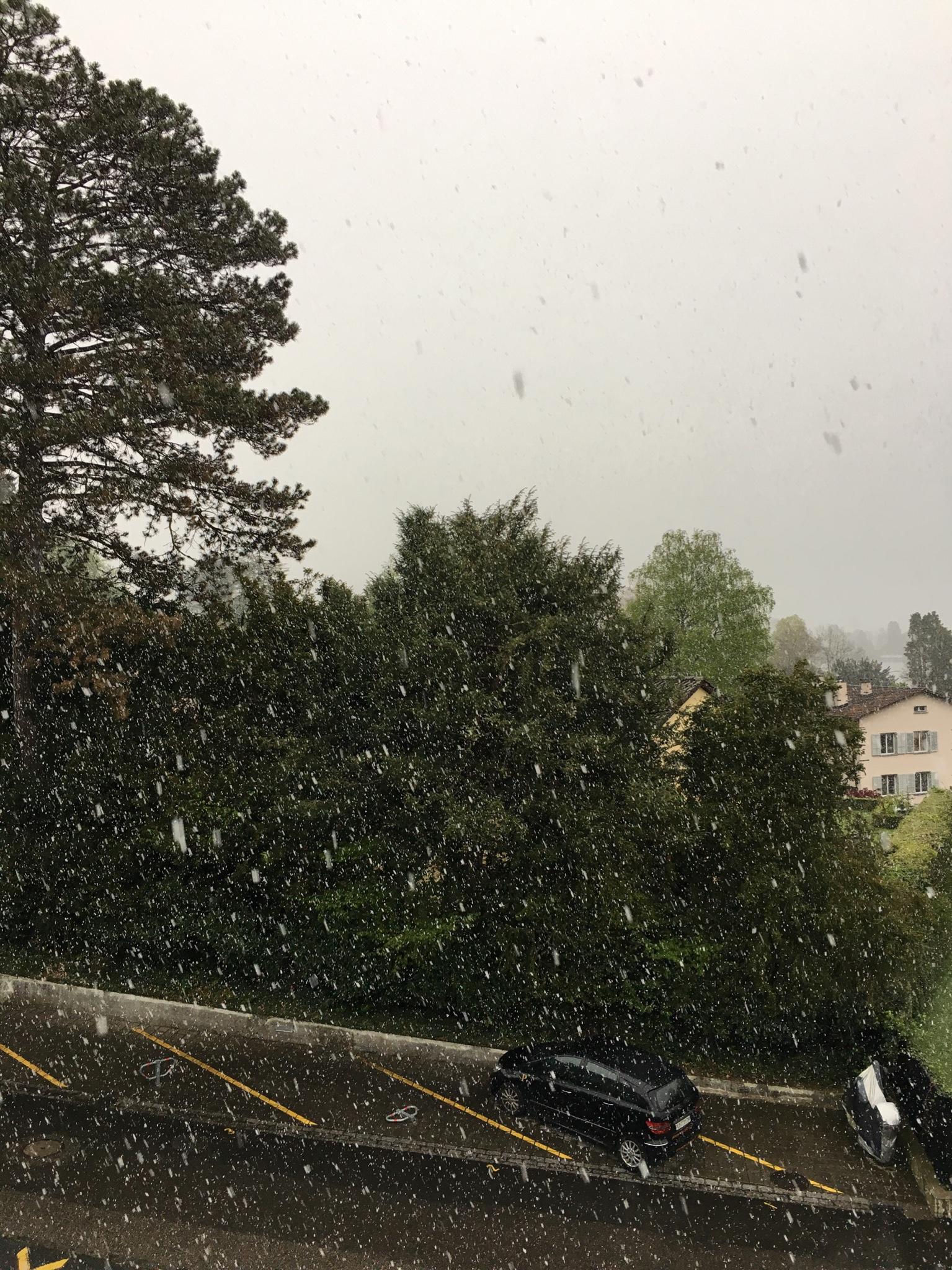 Lucerna: Il clima oltr'alpe-img_5080.jpg