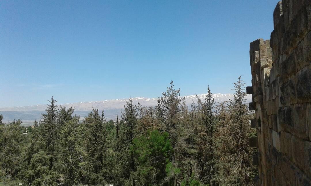 Catena del Libano - Situazione neve attraverso le stagioni-13-mai-2017-cell-and-020.jpg