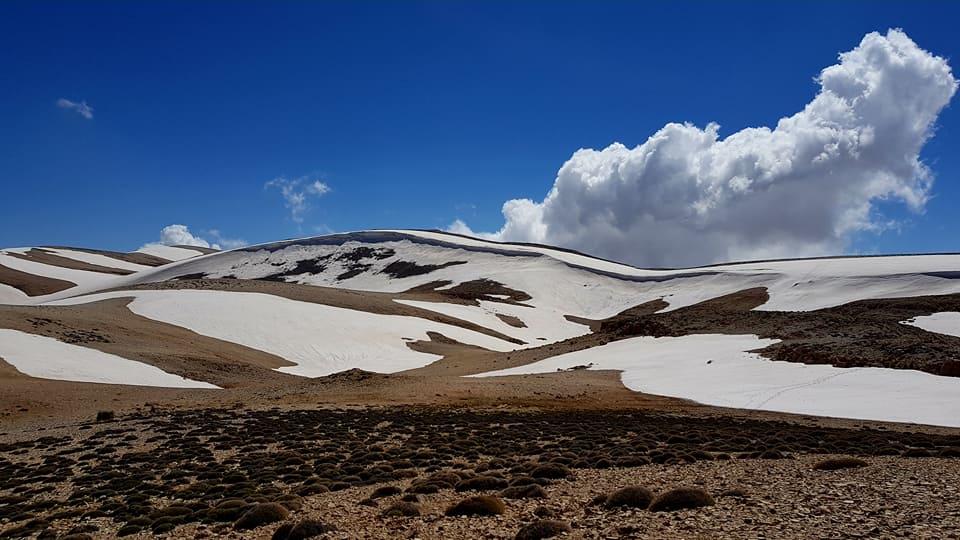 Catena del Libano - Situazione neve attraverso le stagioni-18893086_10154398720060810_5651700048533099094_n.jpg