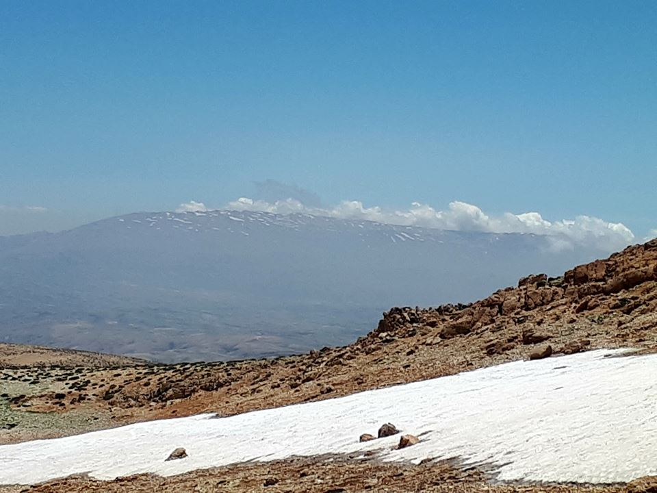 Catena del Libano - Situazione neve attraverso le stagioni-19225284_692703777583437_6237322104570483157_n.jpg
