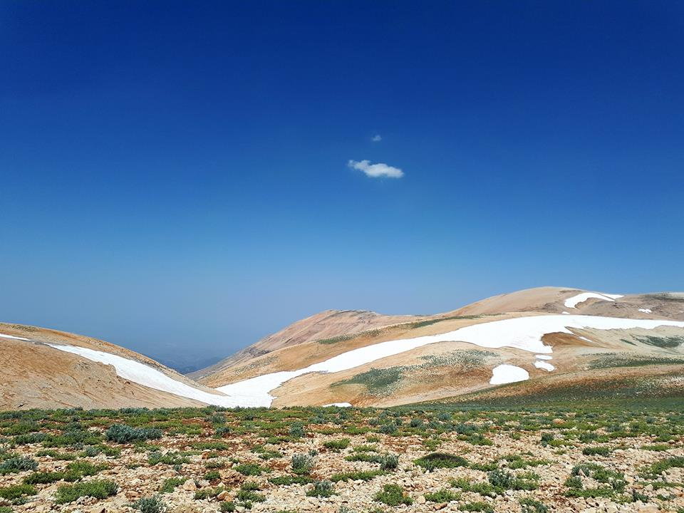 Catena del Libano - Situazione neve attraverso le stagioni-19756653_700207653499716_7244221216391891492_n.jpg