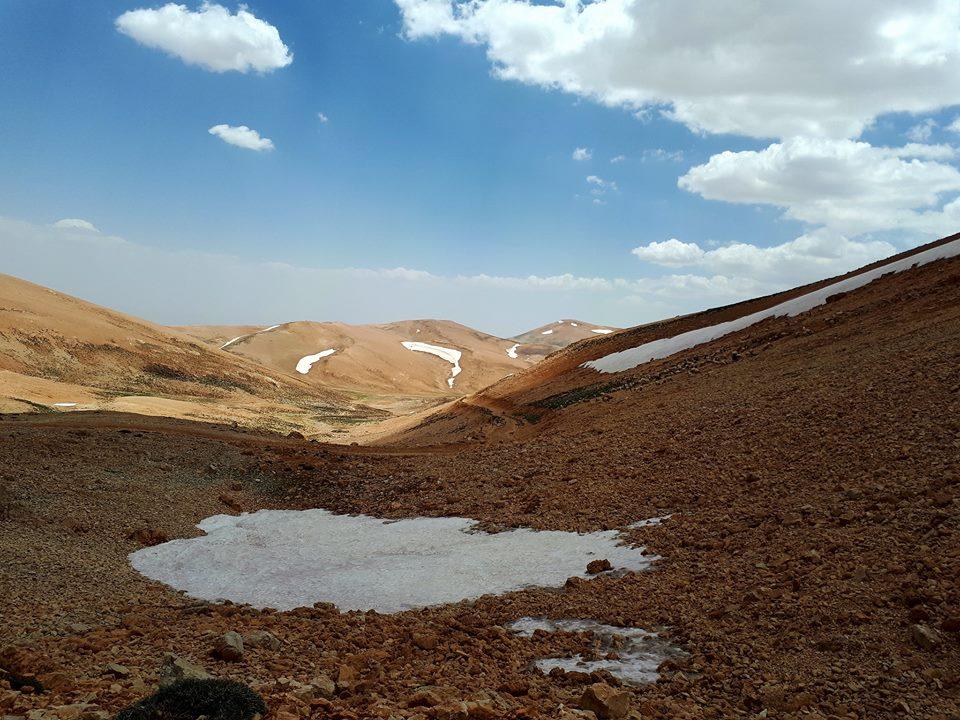 Catena del Libano - Situazione neve attraverso le stagioni-19554313_700207376833077_8803730090295455438_n.jpg