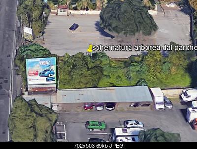 Stazione ENAV di Catania Fontanarossa-schermatura-arborea-lato-sud-stazione-istituto-agragrio.jpg