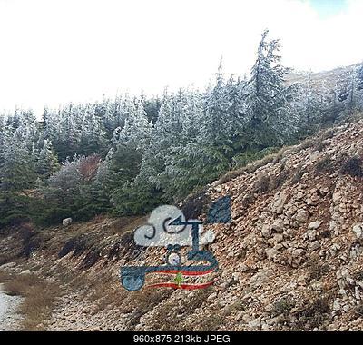 Catena del Libano - Situazione neve attraverso le stagioni-23722723_1673918602668724_6098496961512462969_n.jpg