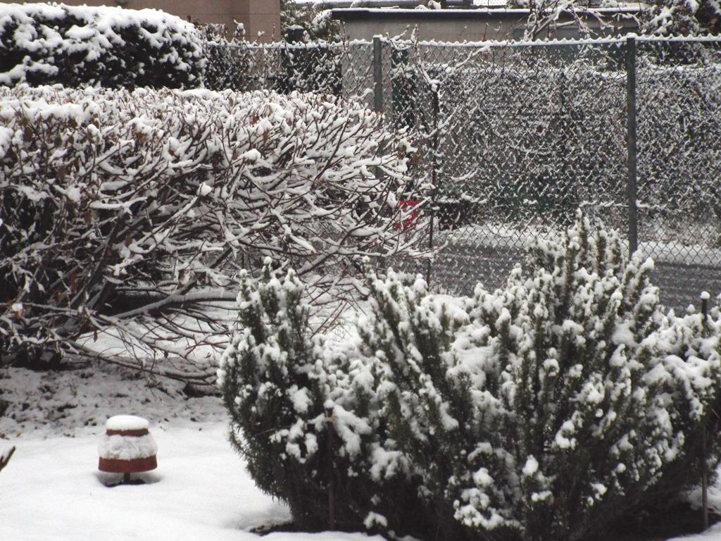Accumuli nivometrici stagione invernale 2017-18-photo_lentate_ss_2017_12_11_neve01.jpg