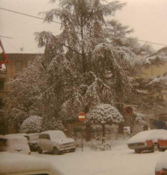 Perturbazione casting 8-9 gennaio in Toscana-piazza-cavallotti.jpg