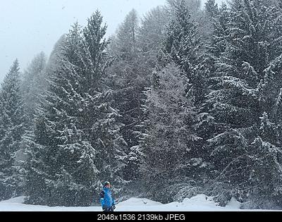 Nowcasting Trentino febbraio 2018-20180201_130754.jpg